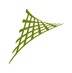 Geometric Morphometrics_transparente