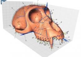 3D Geometric Morphometrics