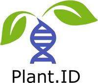 PlantID logo small
