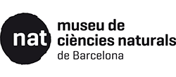 Logo Museum Barcelona
