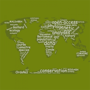 Course Comparative Approaches in Ecology, Evolution and Conservation Science
