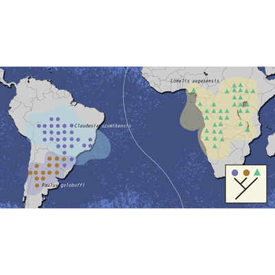 Course Historical Biogeography- Fundamentals and Applications