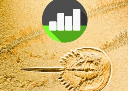 Introduction to Statistical Analysis for Palaeontology and Archaeology