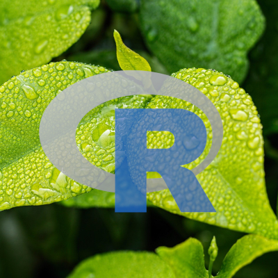 Course Statistical Computing for Environmental Science with R and Rstudio